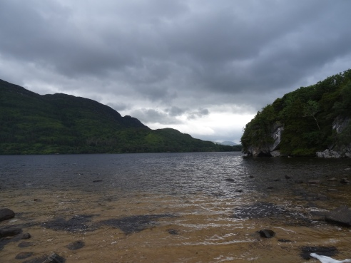 Killarney National Park, field site for songbird cognition studies